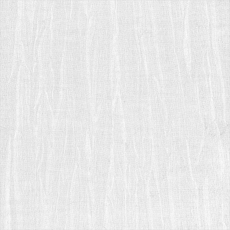 【レース】ASWAN(アスワン)/AUTHENSE9(オーセンス9)/E8016