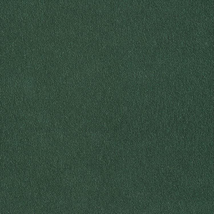 【ドレープ】ASWAN(アスワン)/AUTHENSE9(オーセンス9)/E8087