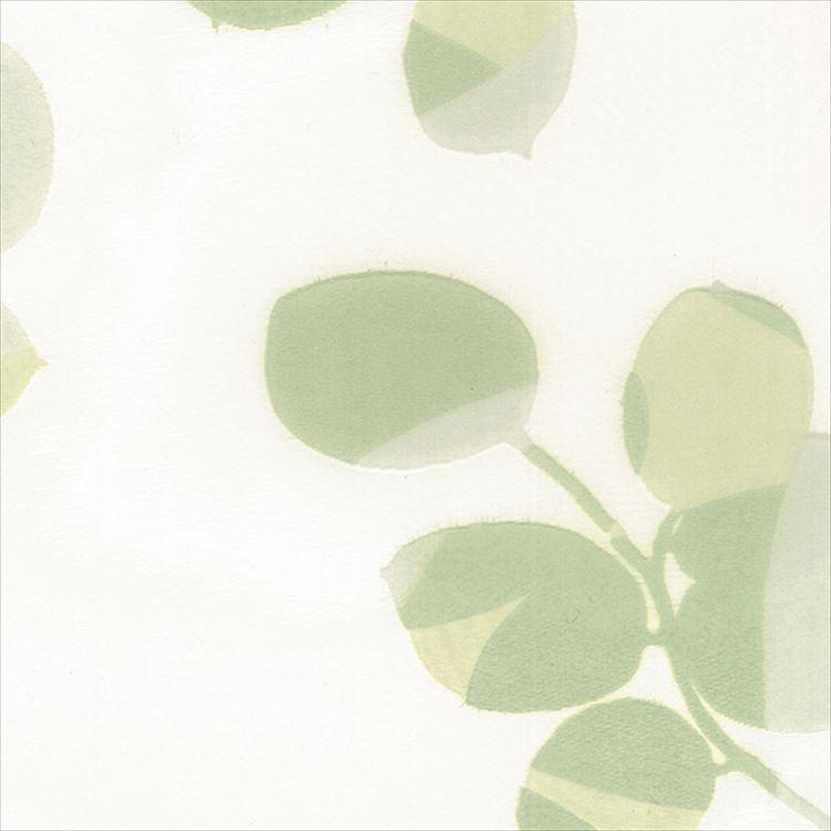 【レース】ASWAN(アスワン)/AUTHENSE9(オーセンス9)/E8304