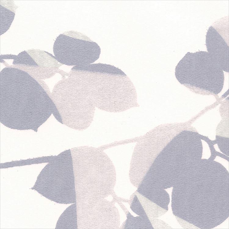 【レース】ASWAN(アスワン)/AUTHENSE9(オーセンス9)/E8305