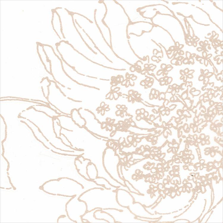 【レース】ASWAN(アスワン)/AUTHENSE9(オーセンス9)/E8315