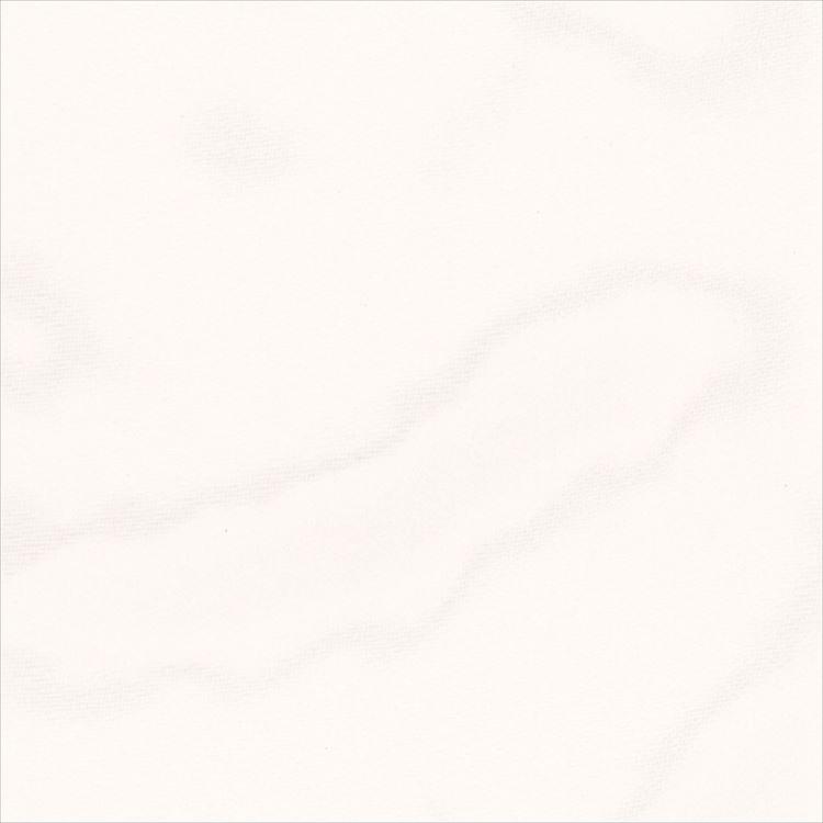 【レース】ASWAN(アスワン)/AUTHENSE9(オーセンス9)/E8324