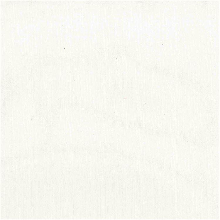 【レース】ASWAN(アスワン)/AUTHENSE9(オーセンス9)/E8332