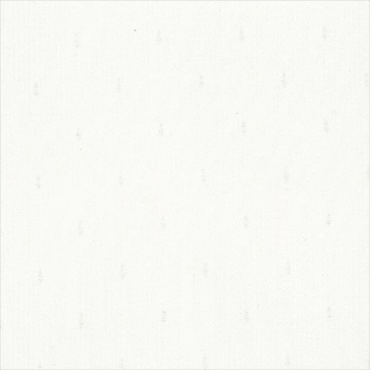 【レース】ASWAN(アスワン)/AUTHENSE9(オーセンス9)/E8372