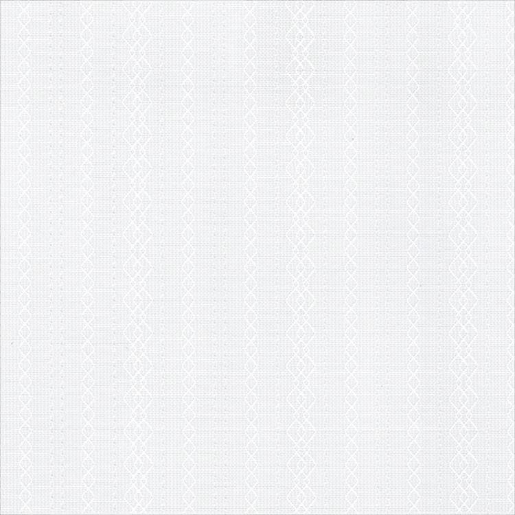 【レース】ASWAN(アスワン)/AUTHENSE9(オーセンス9)/E8377