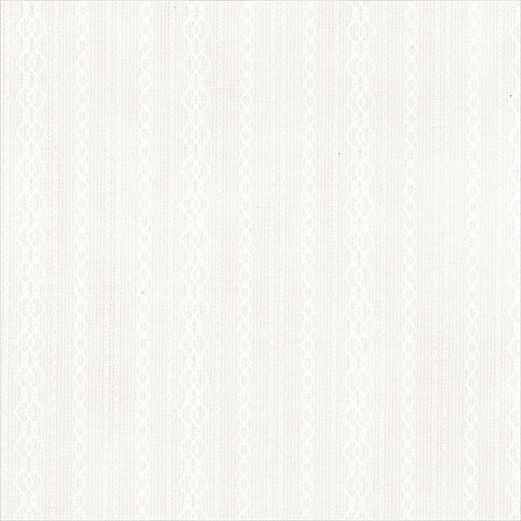 【レース】ASWAN(アスワン)/AUTHENSE9(オーセンス9)/E8378