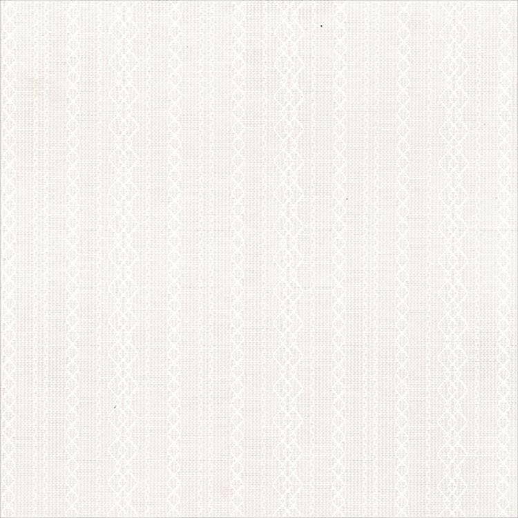 【レース】ASWAN(アスワン)/AUTHENSE9(オーセンス9)/E8380