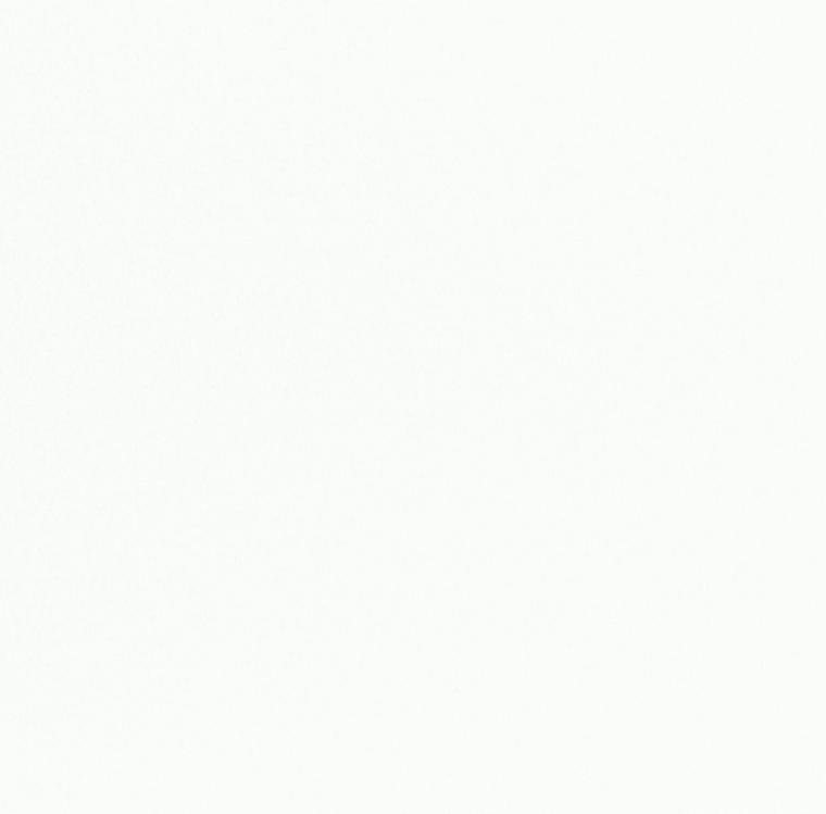【レース】FUJIE TEXTILE(フジエテキスタイル)/STORY4(ストーリー4)/FA0702NW(リルト)