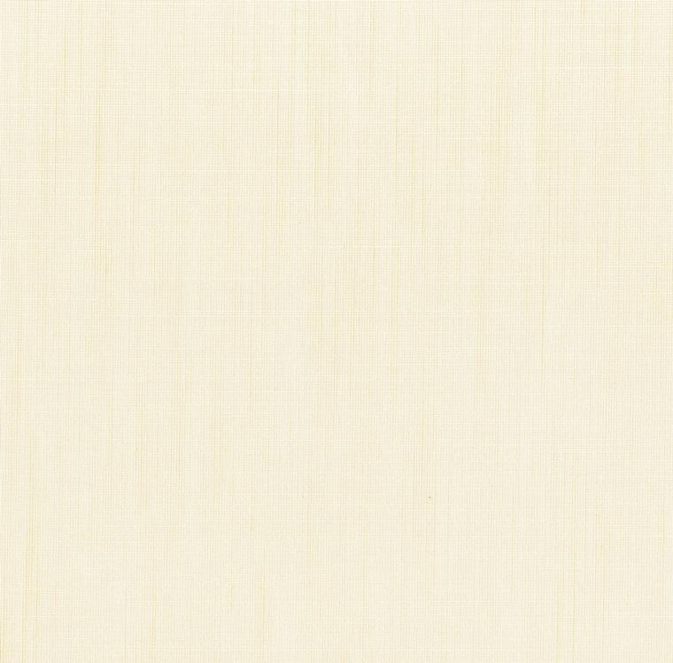 【レース】FUJIE TEXTILE(フジエテキスタイル)/STORY4(ストーリー4)/FA1613NL(フレッティ)