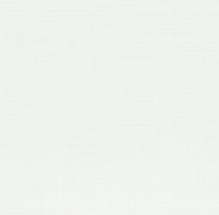 【レース】FUJIE TEXTILE(フジエテキスタイル)/STORY4(ストーリー4)/FA1613WH(フレッティ)