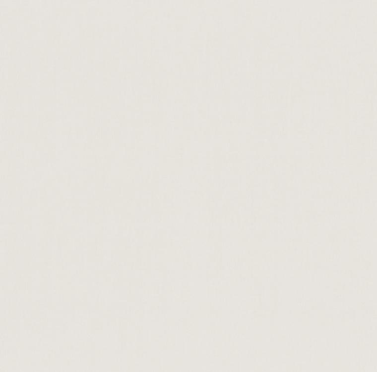 【裏地】FUJIE TEXTILE(フジエテキスタイル)/PROFILE4(プロファイル4)/FA2100NW(コトニー)