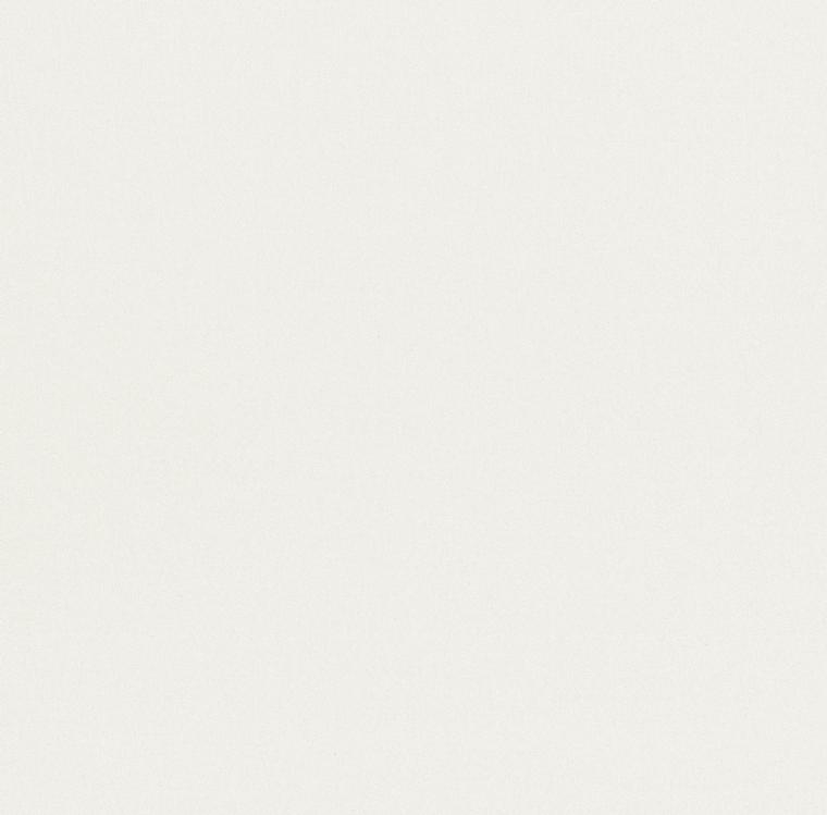 【裏地】FUJIE TEXTILE(フジエテキスタイル)/STORY4(ストーリー4)/FA2430NW(グロッシー)