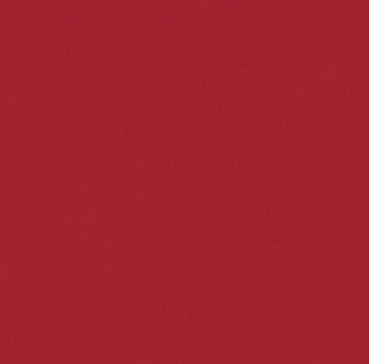 【レース】FUJIE TEXTILE(フジエテキスタイル)/STORY4(ストーリー4)/FA246078(エマ)