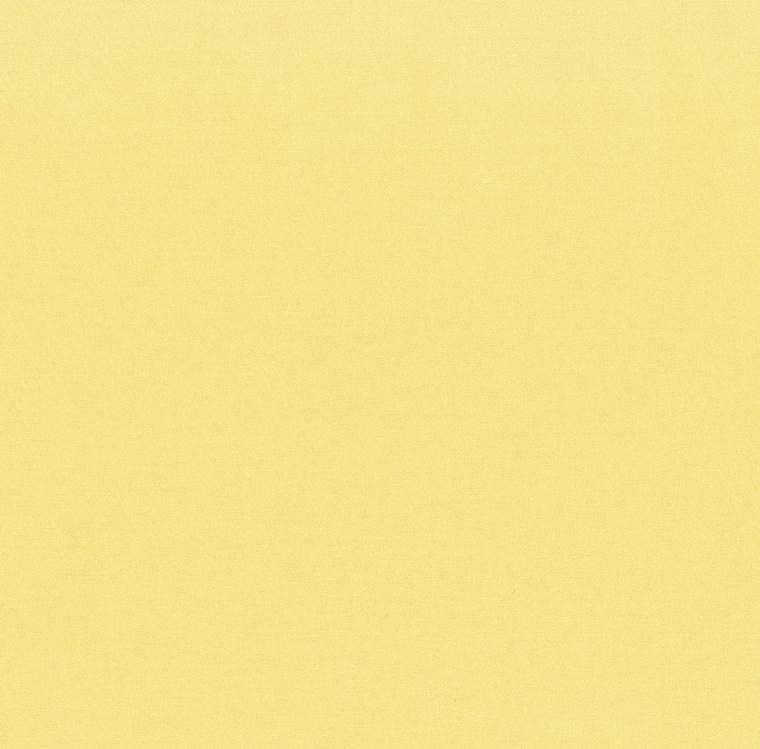 【ドレープ】FUJIE TEXTILE(フジエテキスタイル)/STORY4(ストーリー4)/FA2470YE(ヤム)