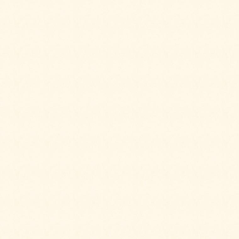 【ドレープ】KAWASHIMA SELKON(川島織物セルコン)/FELTA(フェルタ)/FT6411
