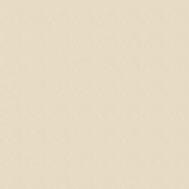 【ドレープ】KAWASHIMA SELKON(川島織物セルコン)/FELTA(フェルタ)/FT6413