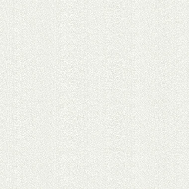 【レース】KAWASHIMA SELKON(川島織物セルコン)/FELTA(フェルタ)/FT6646