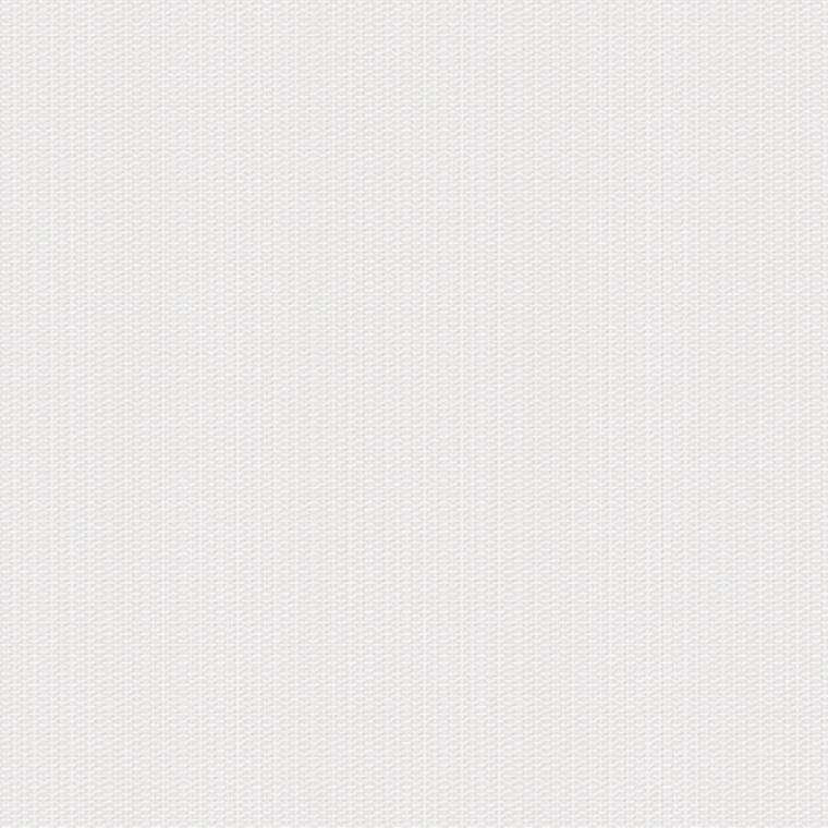 【レース】KAWASHIMA SELKON(川島織物セルコン)/FELTA(フェルタ)/FT6673