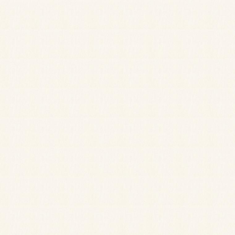 【レース】KAWASHIMA SELKON(川島織物セルコン)/FELTA(フェルタ)/FT6680