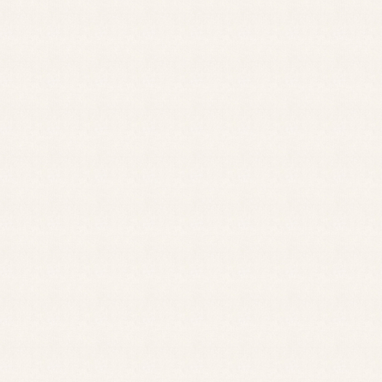 【レース】KAWASHIMA SELKON(川島織物セルコン)/FELTA(フェルタ)/FT6719
