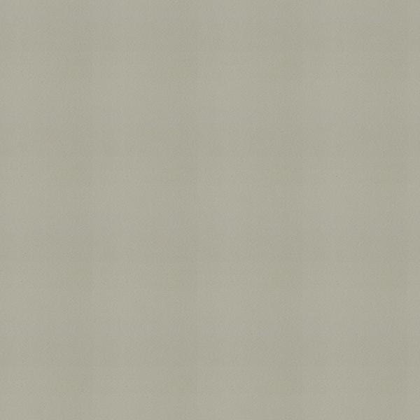 【裏地】KAWASHIMA SELKON(川島織物セルコン)/Filo(フィーロ)/FF1253(アレンシェ)